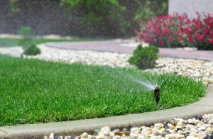 types of sprinkler